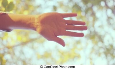 Many hands together over sky and trees in slowmotion....