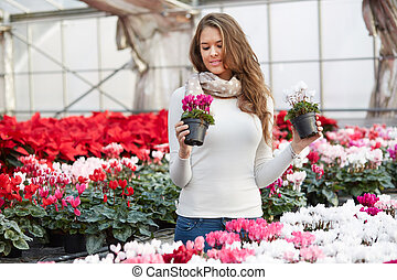 young women choosing poinsettia at garden store