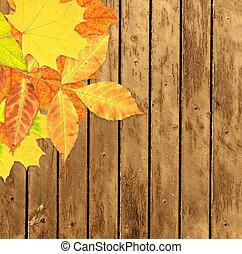 grunge, legno, Foglie, autunno, fondo, assi