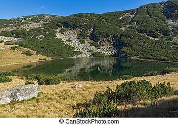 Yonchevo lake, Rila Mountain - Yonchevo lake and green...