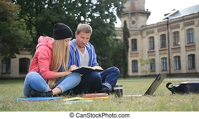 Couple of students learning together - Attractive couple of...