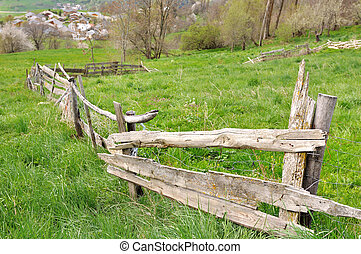 fence in meadow - old fence for farm animals in a meadow...
