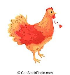 Full body of brown hen standing on white background - Full...