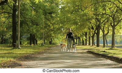 Girl model walking in the park with dogs