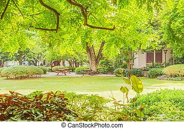 Bangkok, Thailand - June 5, 2016: Silvan Chamchuri or Mimosa...
