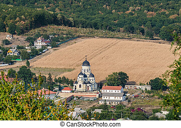 Landscape view with Capriana Monastery and the village...