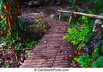 Wooden walkway & Stairs - Wooden walkway in forest to...