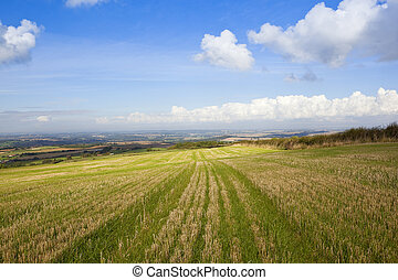 yorkshire wolds vista from a hillside straw stubble field...