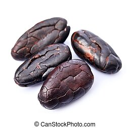 Cocoa beans close up on white