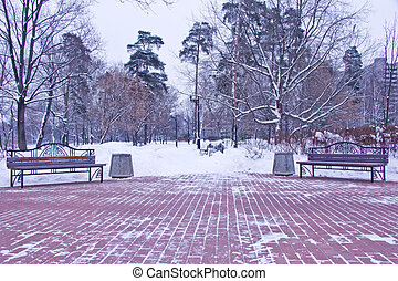 benches and lanterns in winter forest - benches and lanterns...