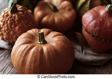 different pumpkins - closeup of some different pumpkins on a...