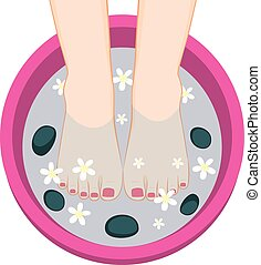 Pedicure Female Feet Spa Bowl - Illustration of female feet...
