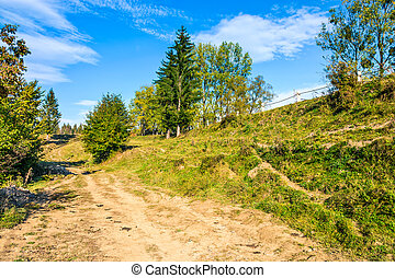 path on hillside meadow in mountain - early autumn...