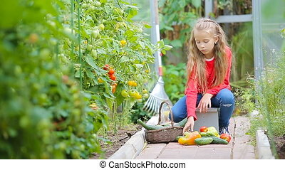 Adorable little girl gathering crop of cucumbers, pepers and...
