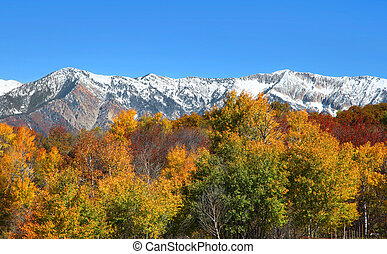 Snow covered rocky mountains - Snow covered Colorado rocky...