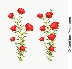 Growing Flowers Plants Vector Illustration