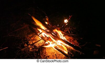 Burning wood in the fireplace - Fire flames campfire at...
