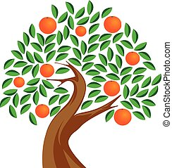 Orange tree Illustrations and Stock Art. 33,463 Orange ...