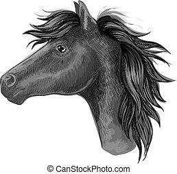 Black mare horse sketch for riding club design - Black mare...