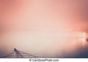 river - Beautiful sunset on the river. Fisherman is in the...
