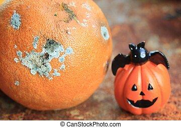 orange, Fäule,  halloween, Tag