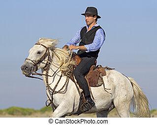 cavalo, praia, cavaleiro