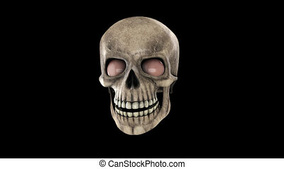 Animated skull with eyes and alpha channel HD