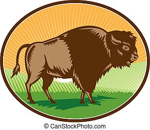 American Bison Oval Woodcut - Illustration of an american...