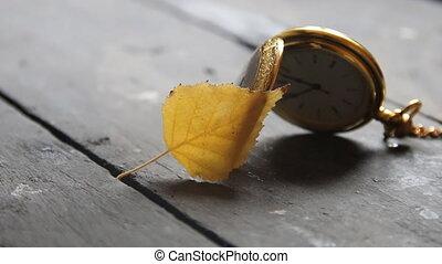 Autumn time or november idea - Autumn time, vintage pocket...