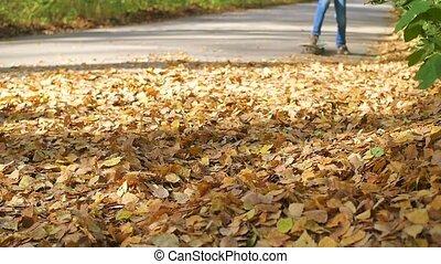 teen rides a skateboard through fallen autumn leaves in the park