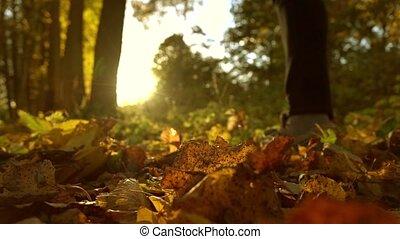 Defocused girl running on fallen autumn leaves in sunny...