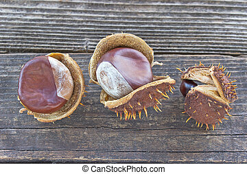 Chestnut berries on woode background