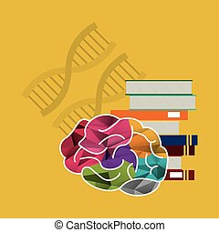 human brain and books with dna strands icon image