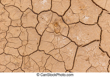 Dry cracked earth texture