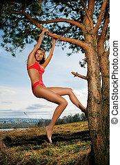 Beautiful Woman In Tree