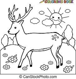 Deer coloring book page