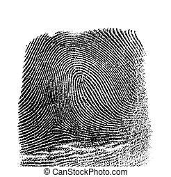 Fingerprint on white background