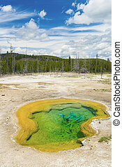 Geothermal pool - Deatiled photo of a turquoise thermal pool...