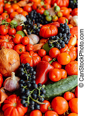 Vegetable background. Healthy lifestyle. The concept of...
