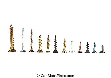 Various screws on a white background