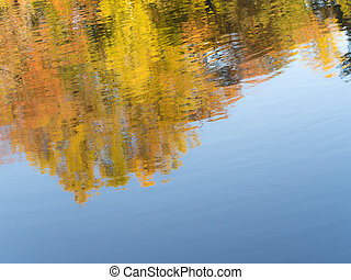 abstract reflection of autumn trees and leaves in the water