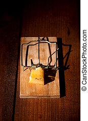 charged mousetrap cheese - cocked mousetrap with a piece of...
