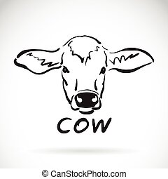 Vector of hand sketch a cow head on a white background. Animal design