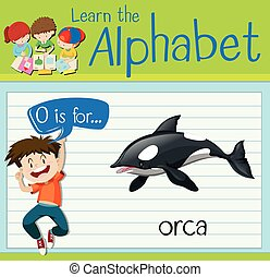 Flashcard letter O is for orca illustration