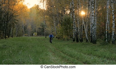 A cyclist rides along a path in a park. On the Sunset - A...