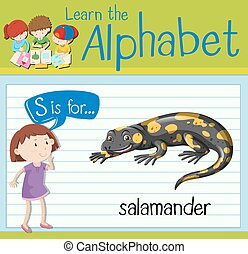 Flashcard letter S is for salamander illustration