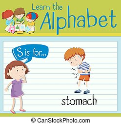 Flashcard letter S is for stomach illustration