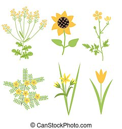 Vector yellow flowers - Vector isolated decorative yellow...