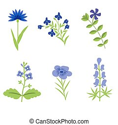 Flowers isolated set - Blue vector flowers isolated set