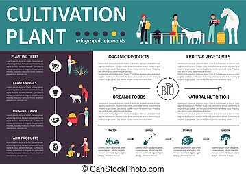 Plant Cultivation infographic flat vector illustration....
